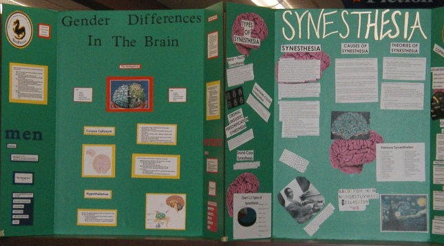 brainposters